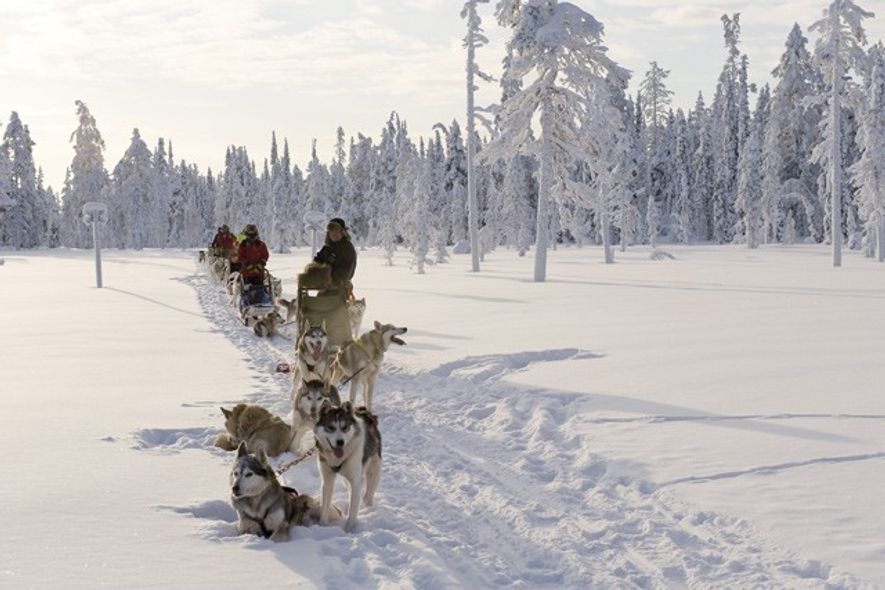 Things to do before 13: Husky Sledding in Finland
