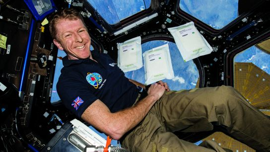 Tim Peake, head of astronaut operations at the European Space Agency, says that commercial space ventures ...