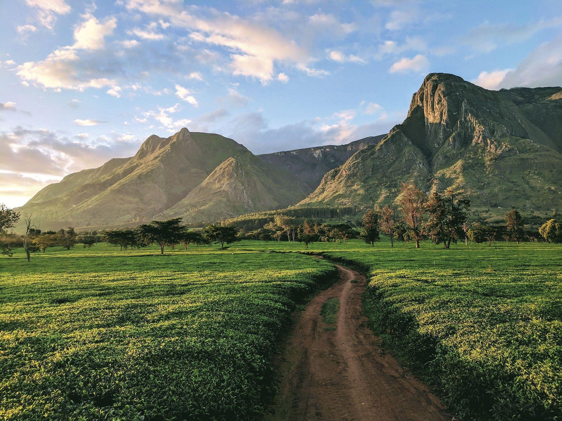 Mount Mulanje, Malawi.
