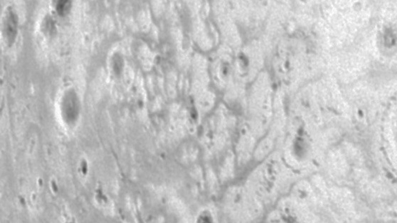 A patch of crisscrossing gullies that could have been carved by liquids
