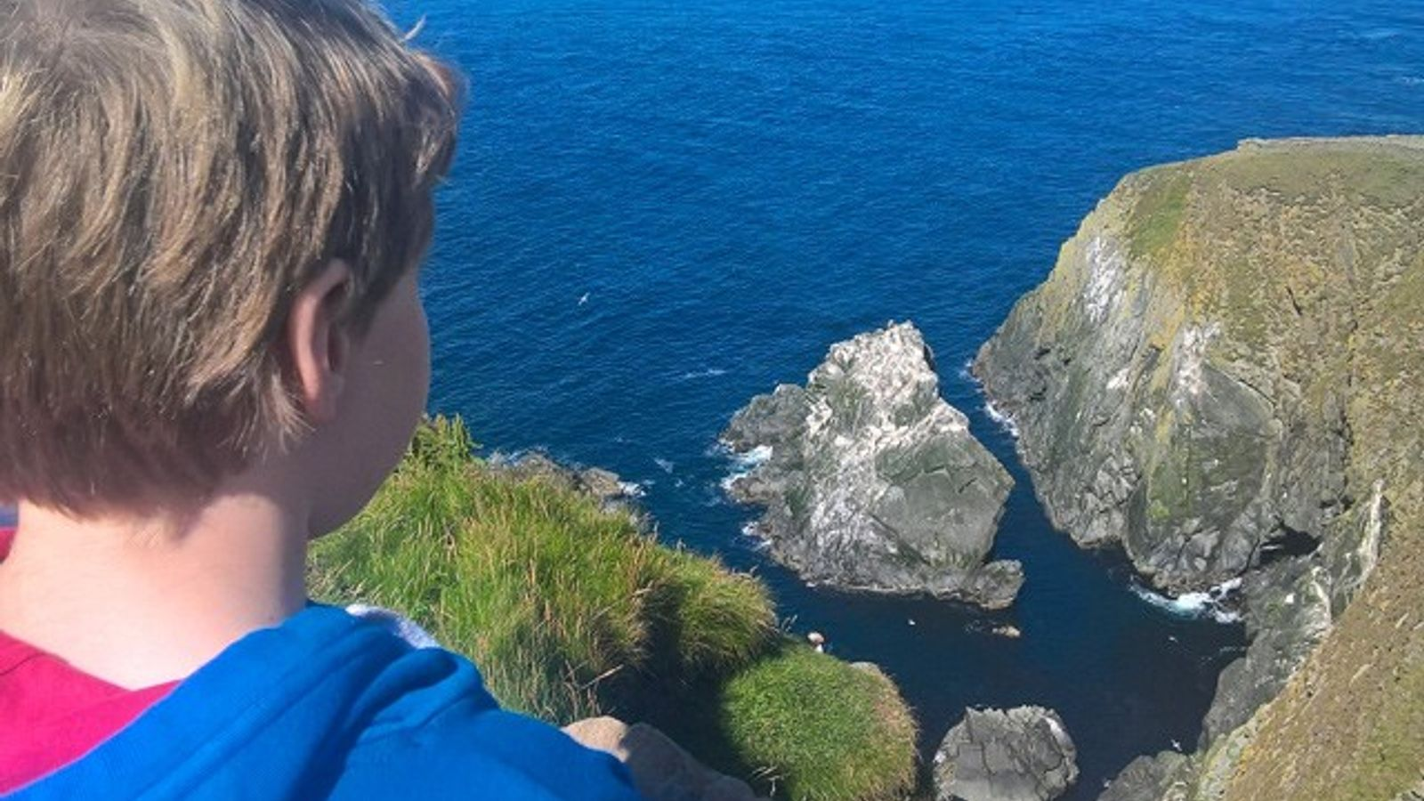 Looking for puffins in Shetland