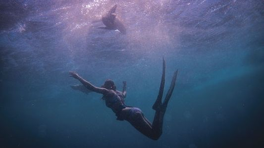 Adventure: Freediving with sharks in Cape Town