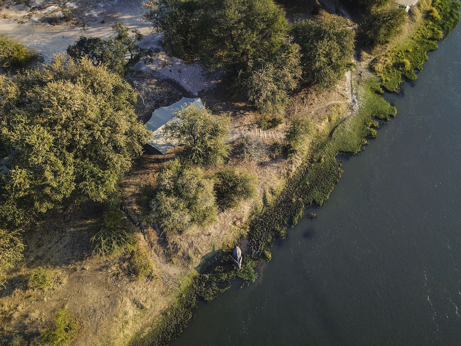 Zambezi, Chikwenya Camp