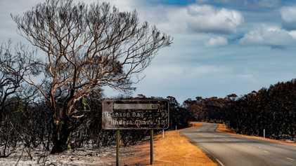 Australia after the bushfires: Ray Mears returns to Kangaroo Island
