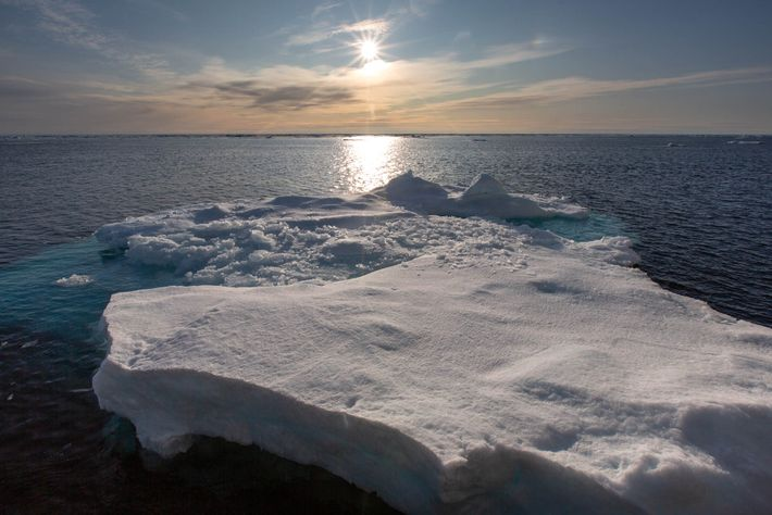 Ice floes float in the Fram Strait between Svalbard and Greenland.