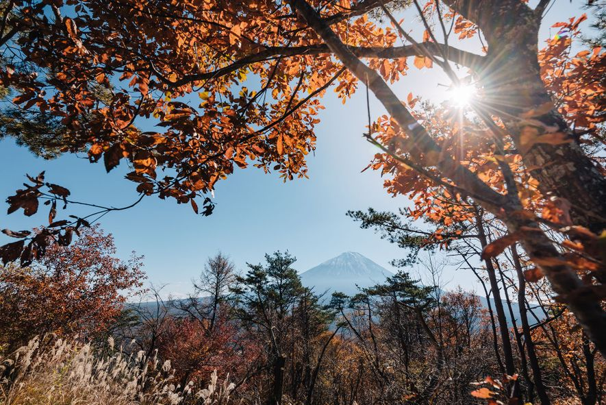 Head to Kanto to experience Japan at it's most spiritual