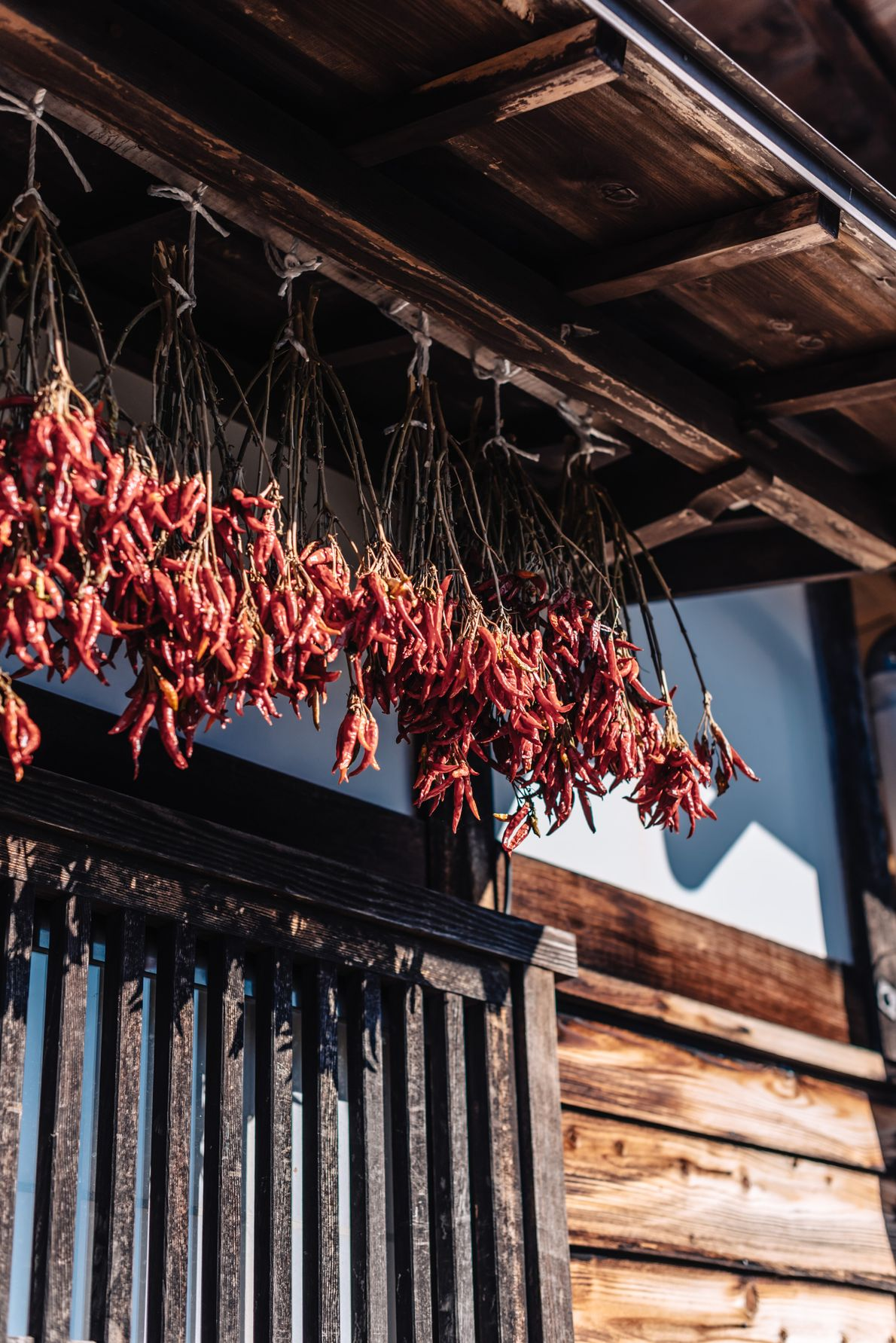 Chilli peppers hang to dry from the eaves of a house.