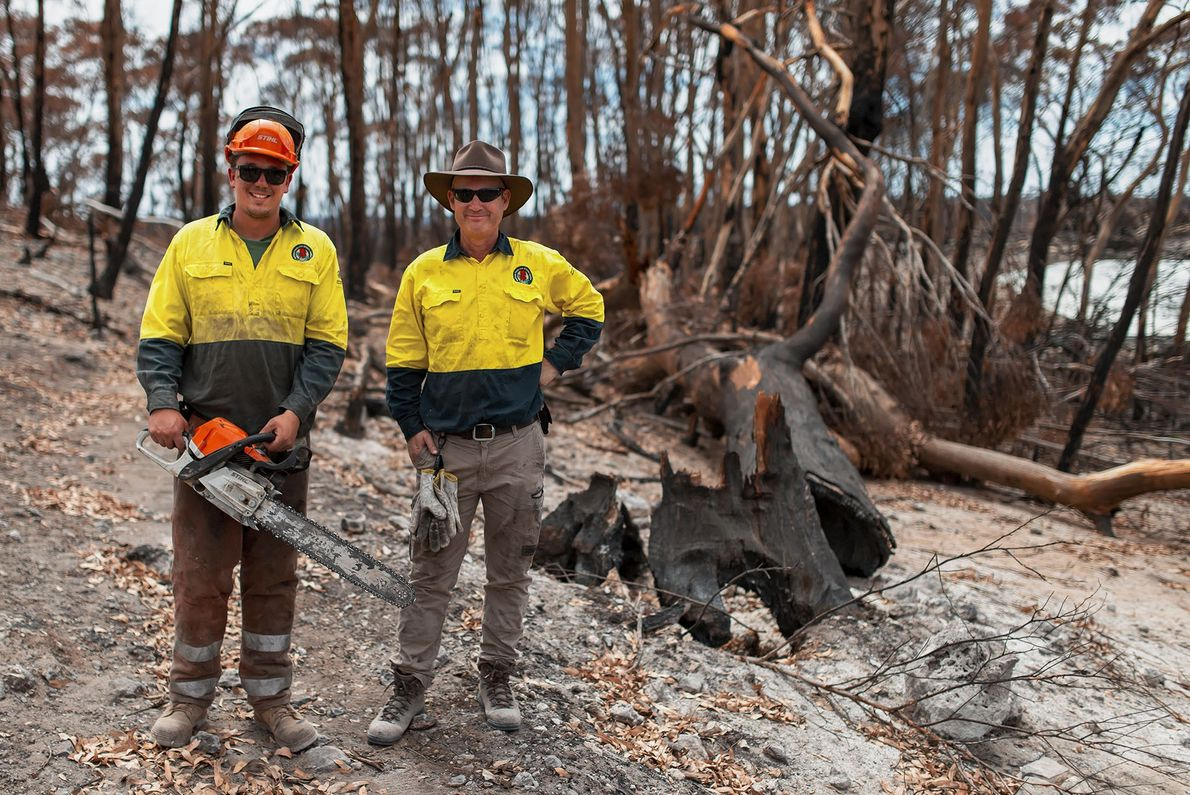 Rangers and workmen begin to clear fallen trees in Flinders Chase National Park. The crews cheerfully ...