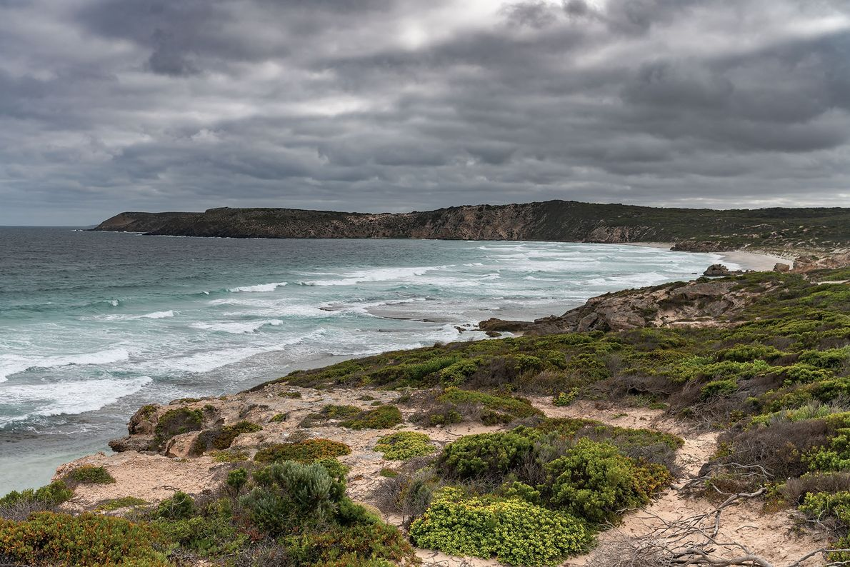 Kangaroo Island is perhaps most beautiful on its quiet, secluded beaches, where time seems to stand ...