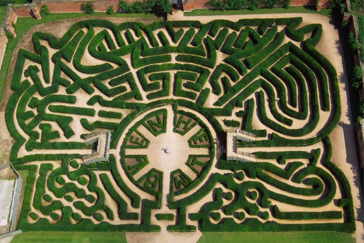 The hedge maze at Blenheim Palace, Marlborough. The design was incorporated into the foil hologram of ...