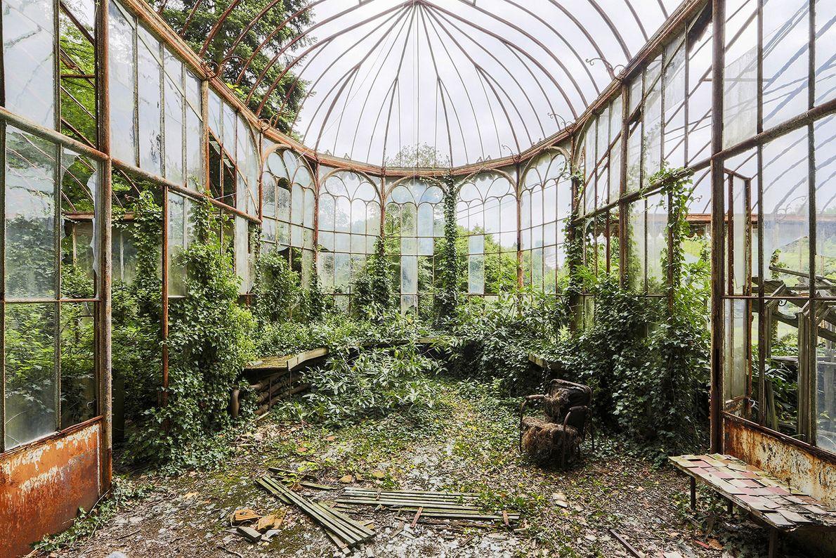 GREENHOUSE, BELGIUM