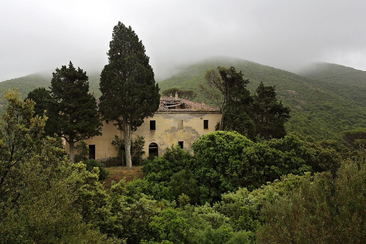 A ghost house is surrounded by the lush hills of Montevecchio, an old mining site in ...