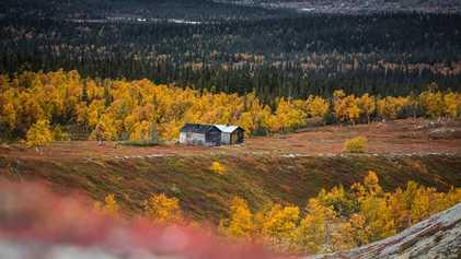 Discover Jämtland's infinite beauty