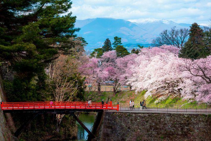 """The mind of the samurai needs to be decisive,"" my teacher Mr Iwasawa Takahiro, a 7th ..."