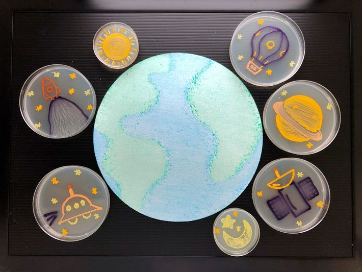 Seven artworks on agar depict celestial objects surrounding Earth in the contest submission titled 'The Micro-Universe.' ...