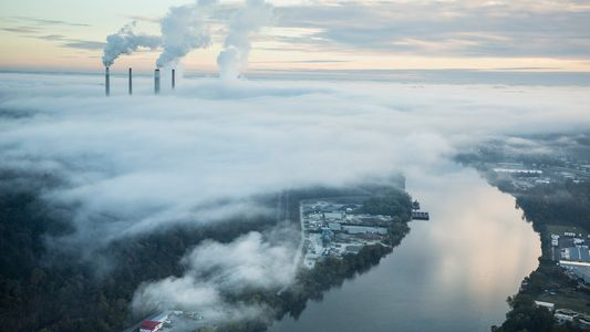 How artificial intelligence can tackle climate change