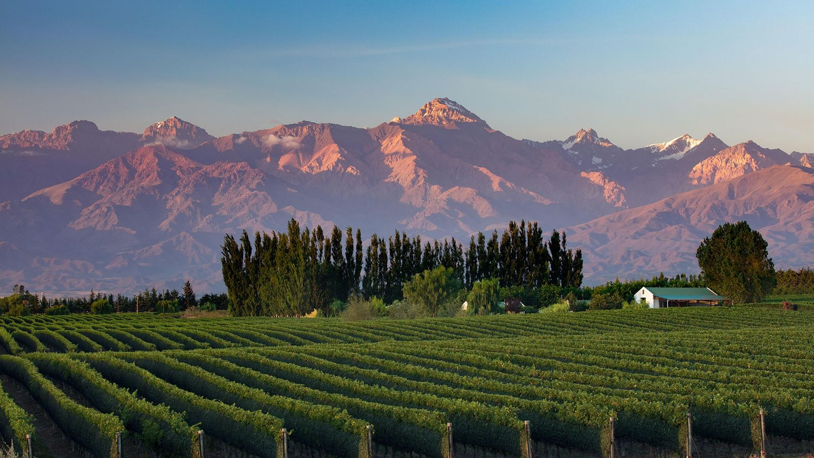 Argentina is know for producing world-class varieties of grapes at high-altitude vineyards in the Uco Valley.