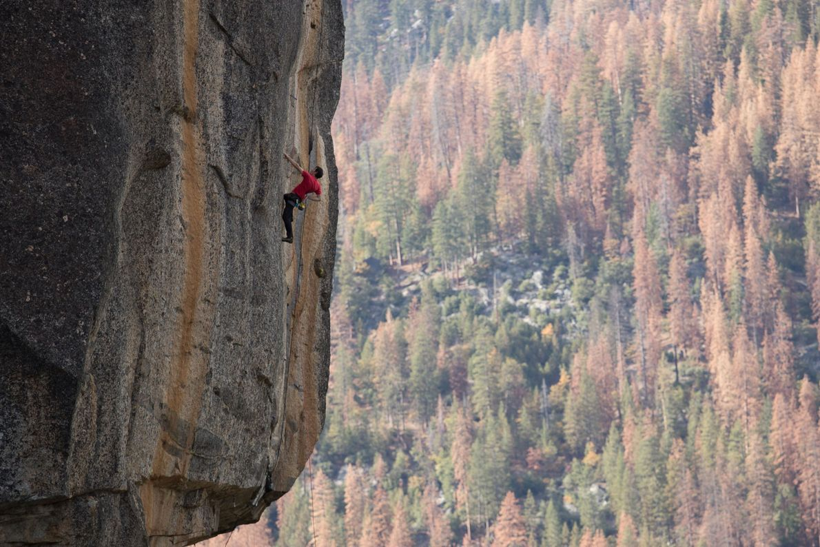 Honnold free solos the Rostrum, a Yosemite route known for its long vertical cracks.