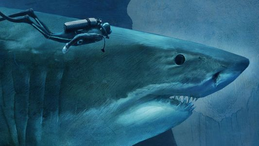 Sizing Up Sharks, the Lords of the Sea