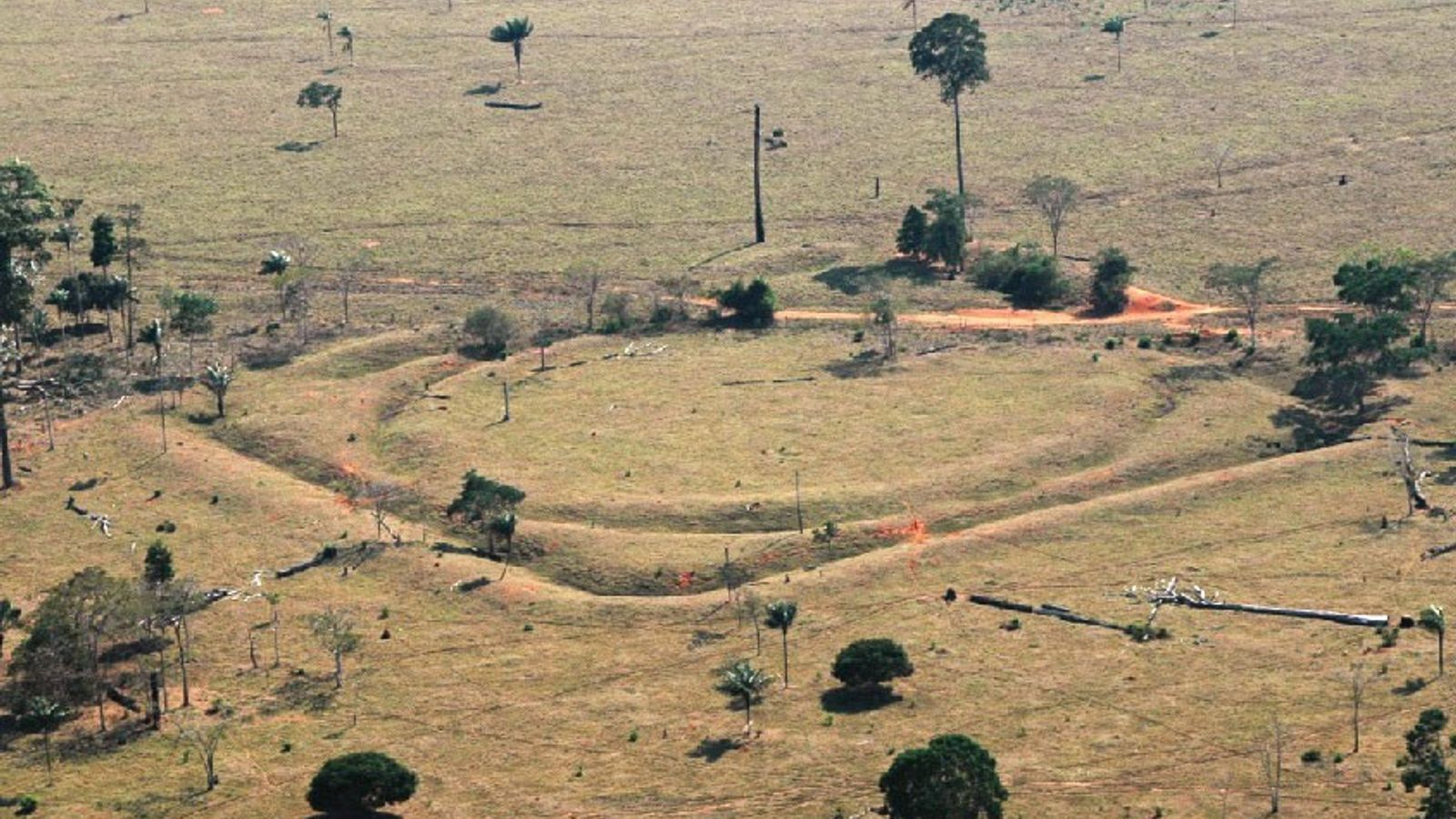 Geoglyphs in the southern Amazon are evidence of a once-thriving population.