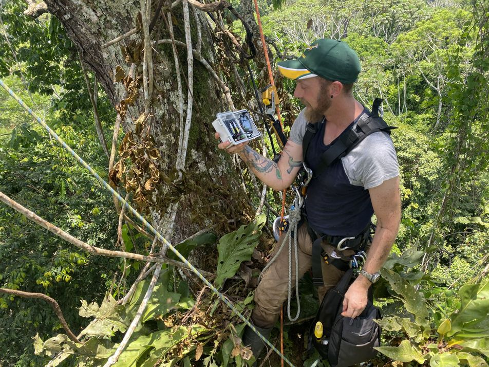 Andy Whitworth live from the rainforest, May 6th