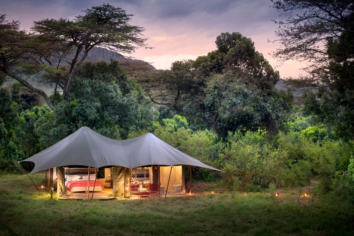 Angama Safari Camp delivers old-school serenity with an ultra-stylish, 21st-century twist, in the heart of one ...
