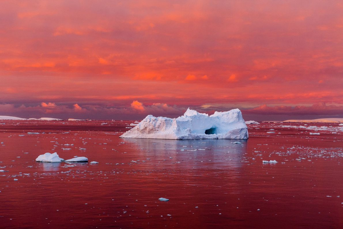 A startling sunset reddens the Lemaire Channel, off the west coast of the Antarctic Peninsula. The ...