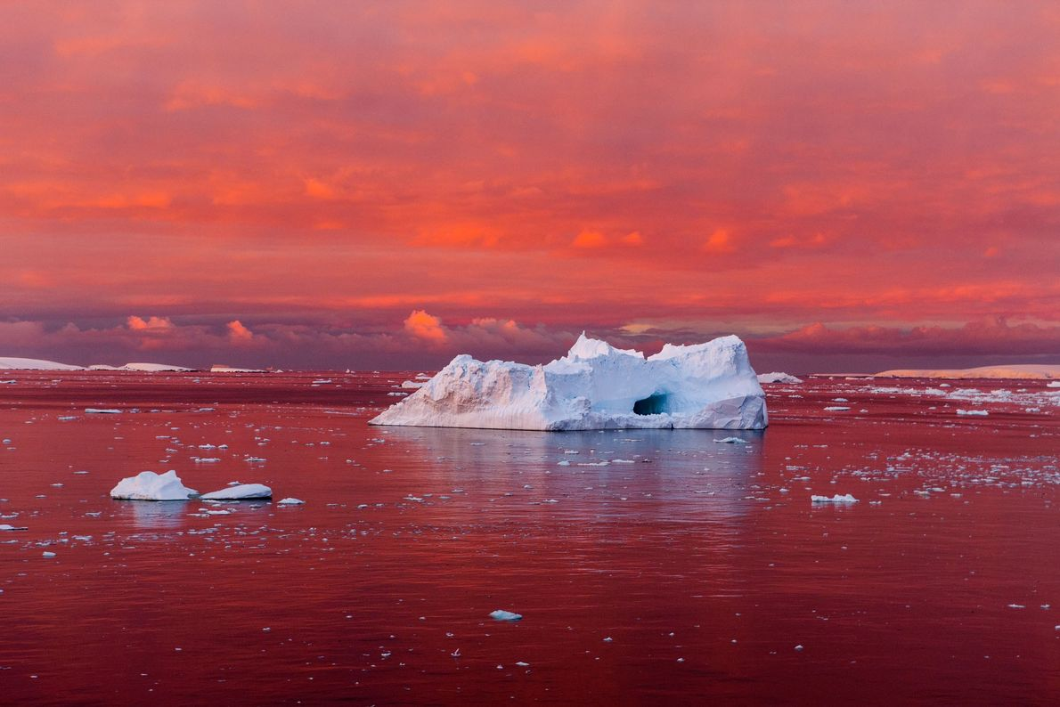A startling sunset reddens the Lemaire Channel, off the west coast of the Antarctic Peninsula. The …