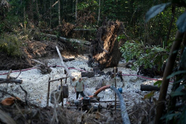 Brazil Rainforest Gold Mining