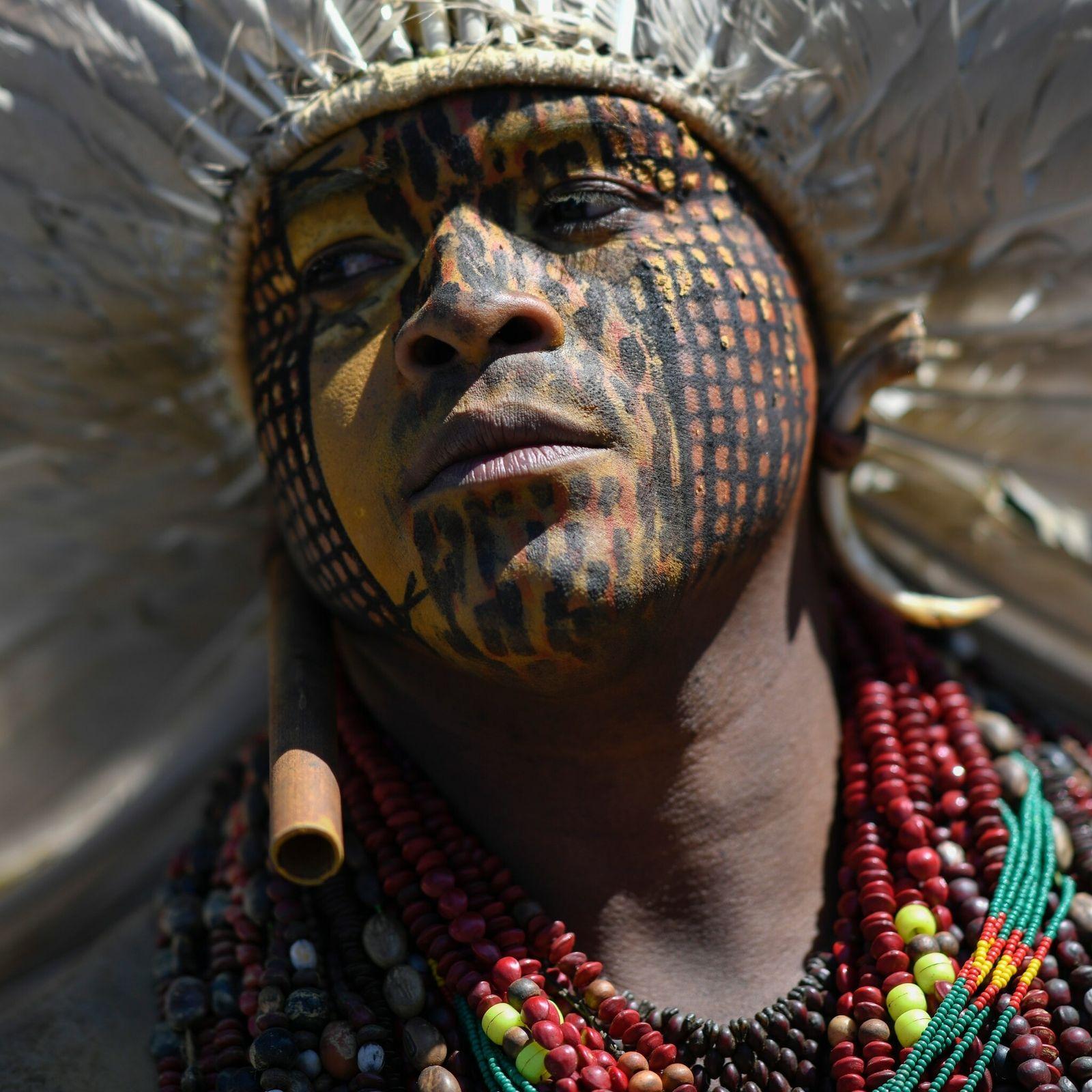 BRASILIA, INDIGENOUS PROTEST