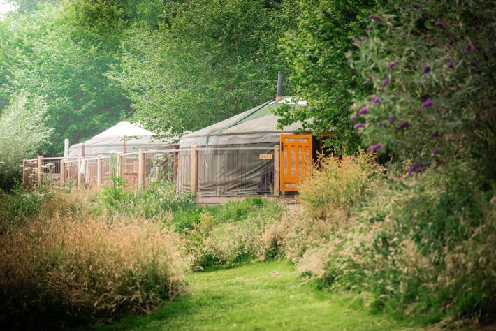 Hidden Valley Yurts, nearRaglan and Usk Castles, ismade for relaxing — from thumbing through a book ...
