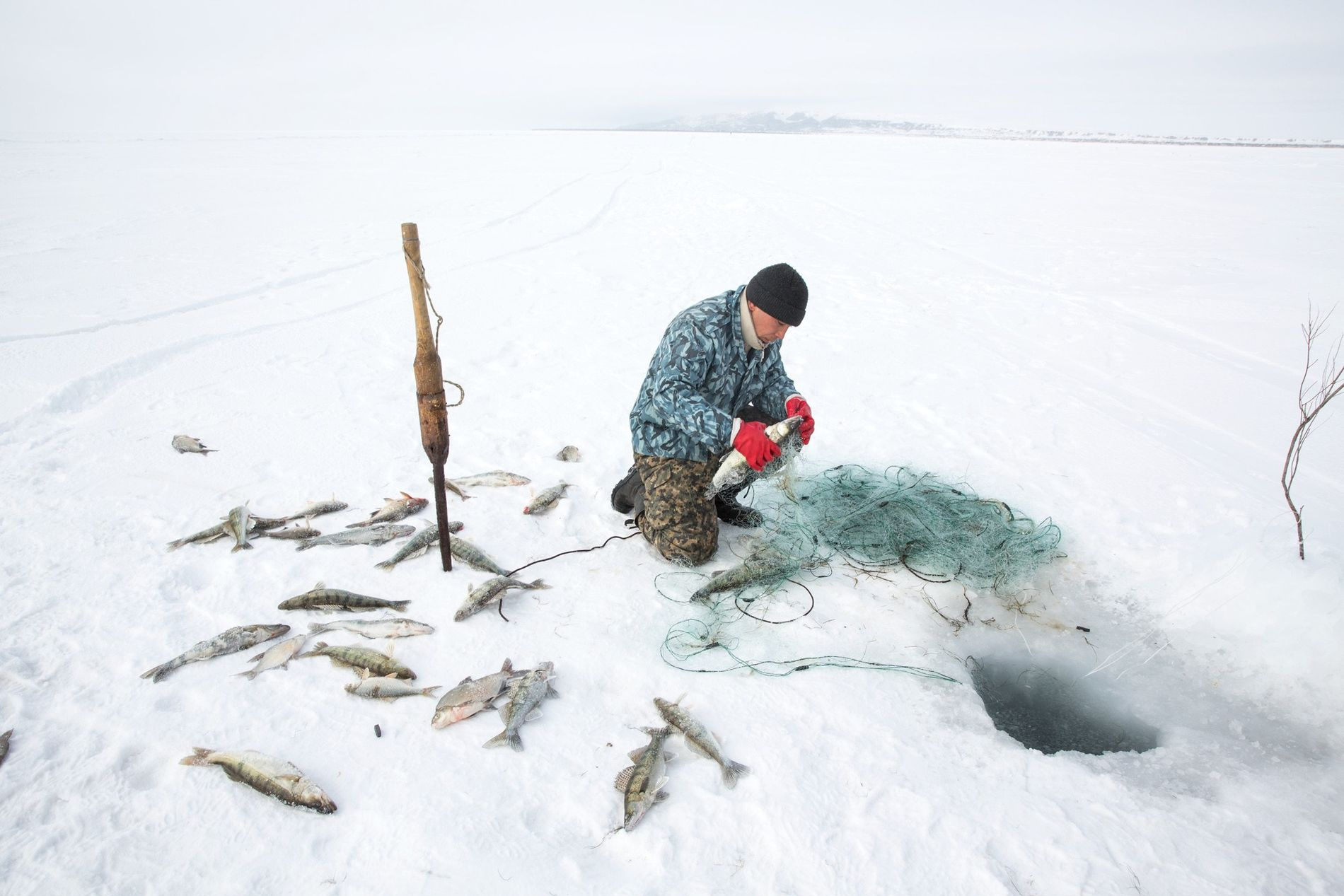Omirserik Ibragimov, 25, uses a net to ice fish on the frozen surface of the North ...