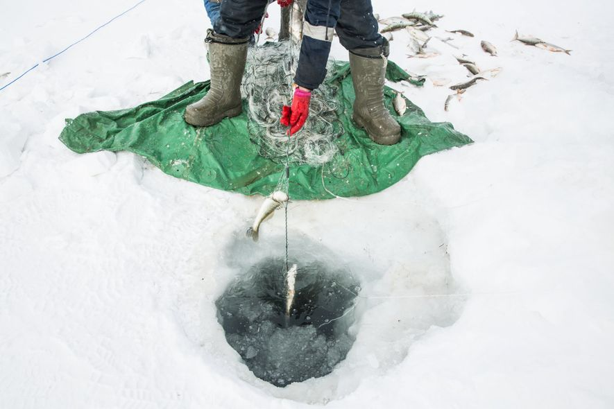Ice fishing can be cold, yet lucrative, work.