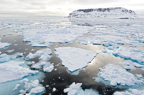 Arctic Sea Ice Is Second-Lowest on Record