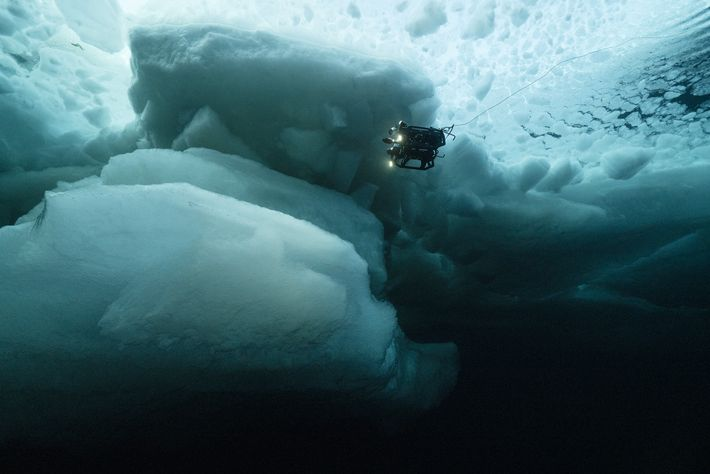 A NASA remotely operated vehicle investigates the waters underneath multi-year ice sheets in the high Arctic ...