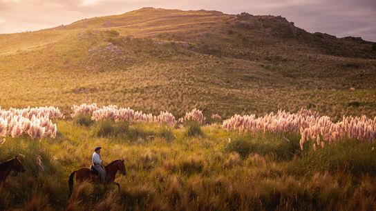 Between the pampas and the Andes, within a range of hills called the Sierras Chicas, the ...