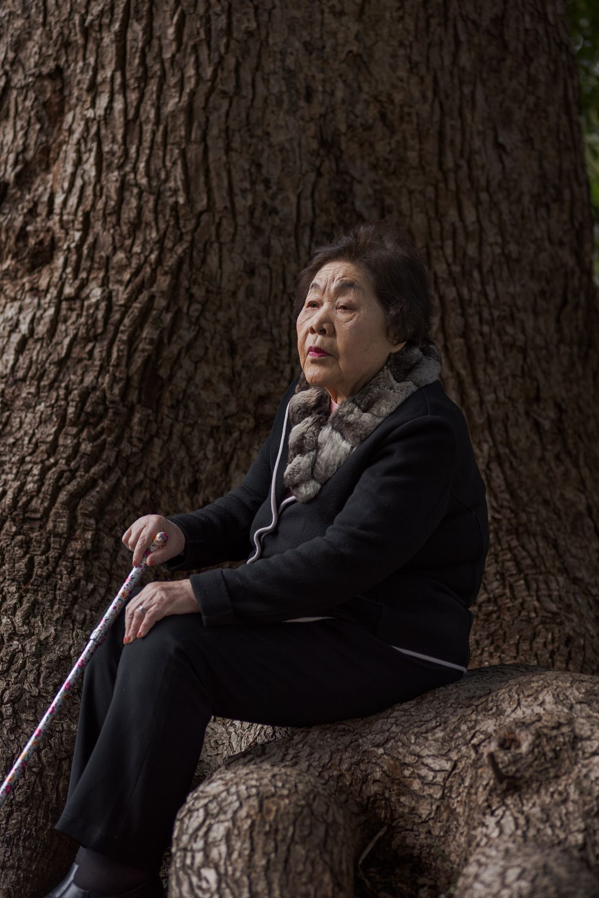Teruko Ueno, 90, rests at the base of a tree that survived the atomic bombing. Her ...