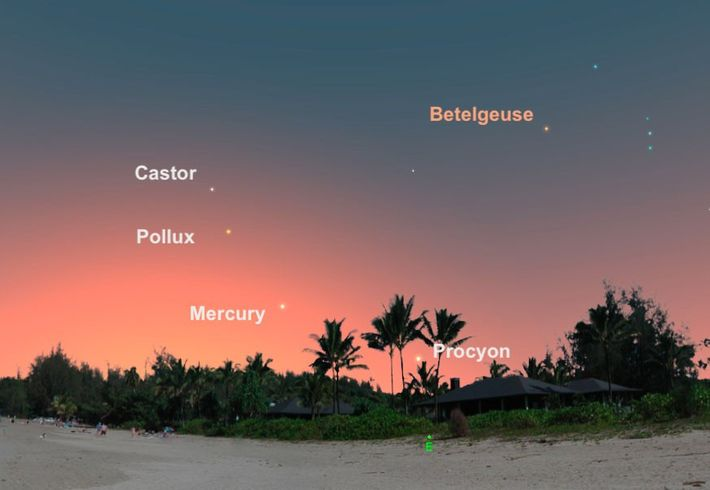 Appearing low in the eastern sky, Mercury will be at its best for the year on ...