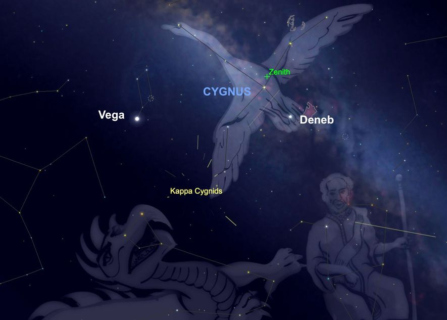 The Kappa Cygnid meteor shower will seem to radiate from the constellation Cygnus on the 17th.
