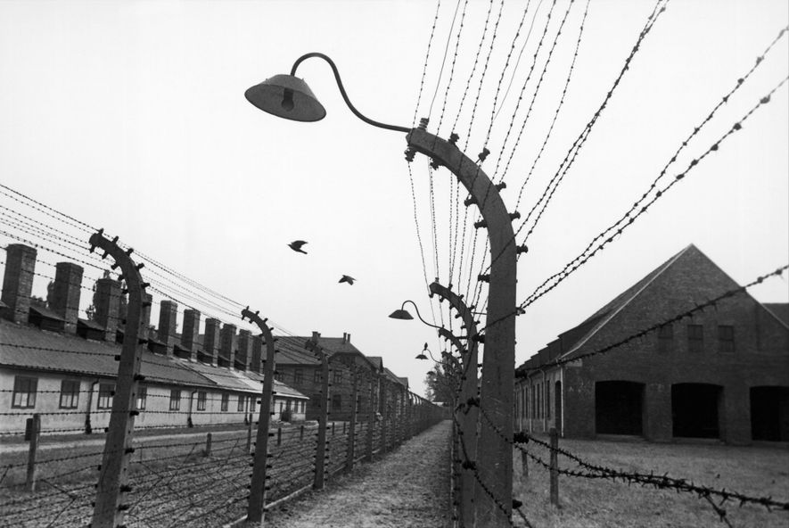 When Edith Friedmann and the other young women arrived at Auschwitz, they didn't know at first ...