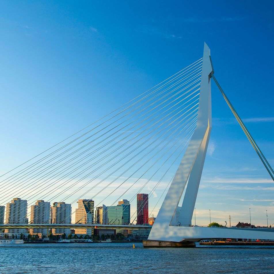 Notes from an author: Ben Coates on Rotterdam