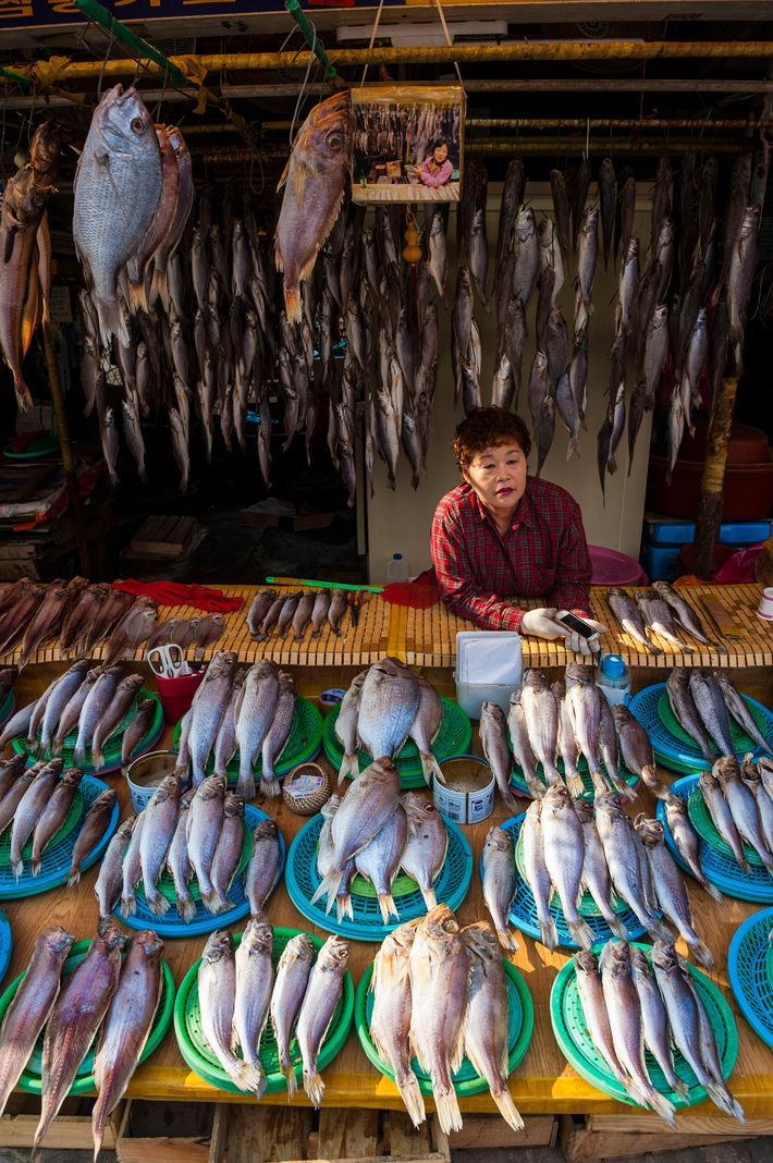 Busan's beating heart is Jagalchi Market, where locals have bought and sold fish for hundreds of years.