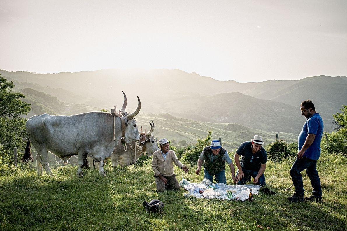 Men prepare a community picnic in the chiapparedd, a resting area outside of Accettura, to consecrate ...