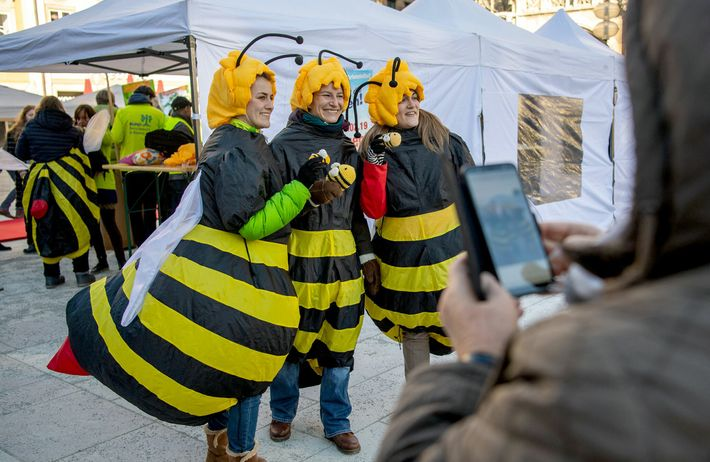 """Activists dressed as bees in Munich, Germany, during the rally to launch the """"Save the Bees"""" ..."""