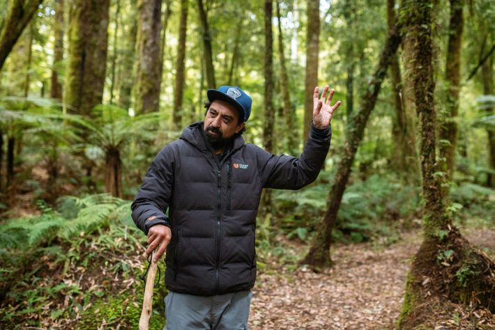 Himi leading a guided walk in Whirinaki Forest.
