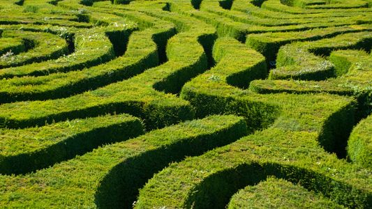 What does it take to make a maze amazing? More than you might think