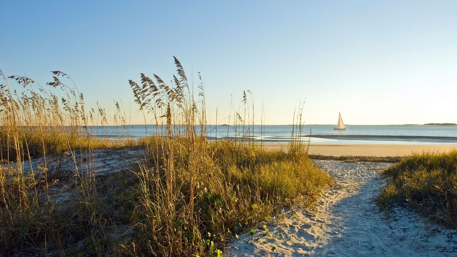 Sandy paths between the dunes lead down to the beach for scenic views.