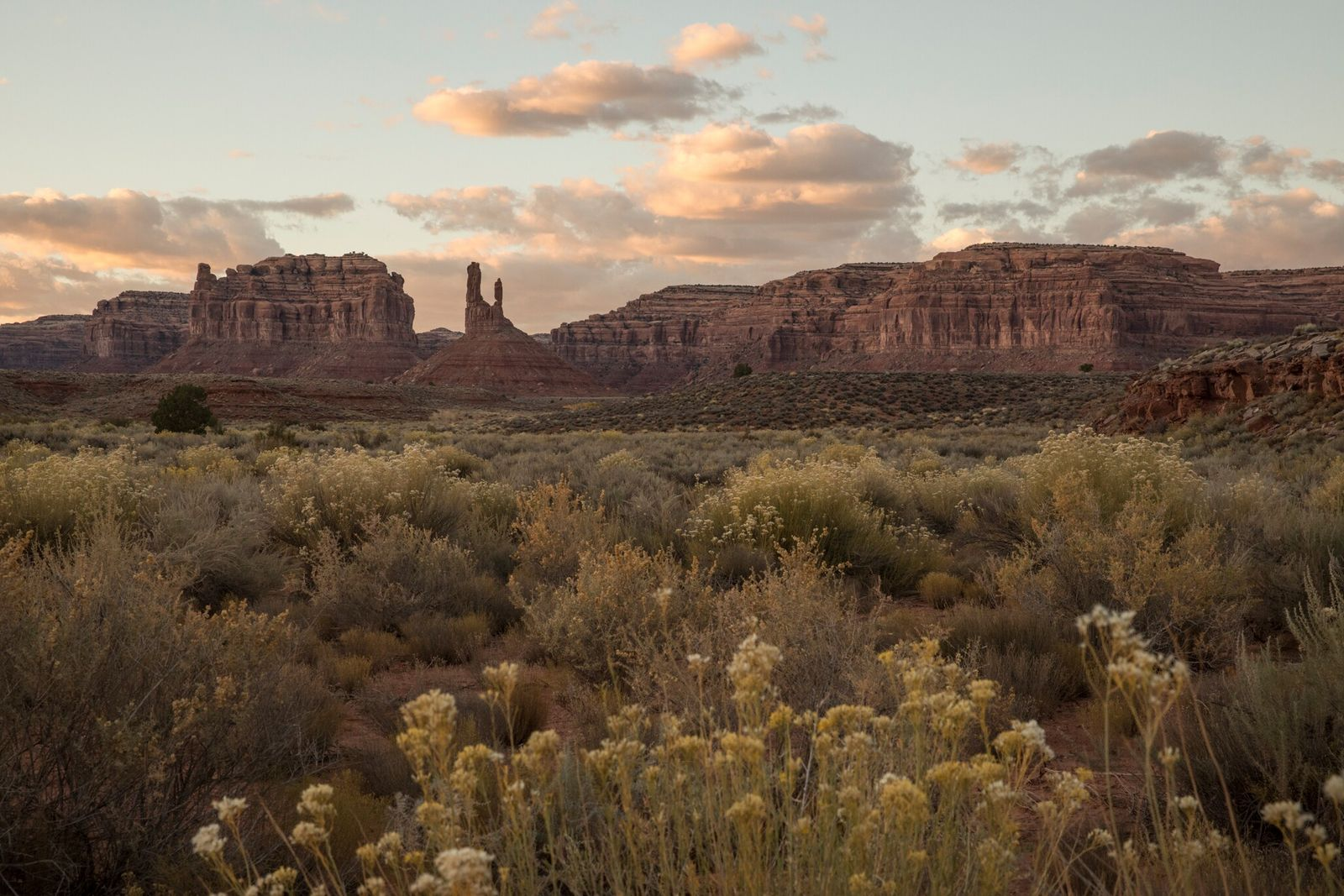 Rock formations in Valley of the Gods in Bears Ears National Monument.