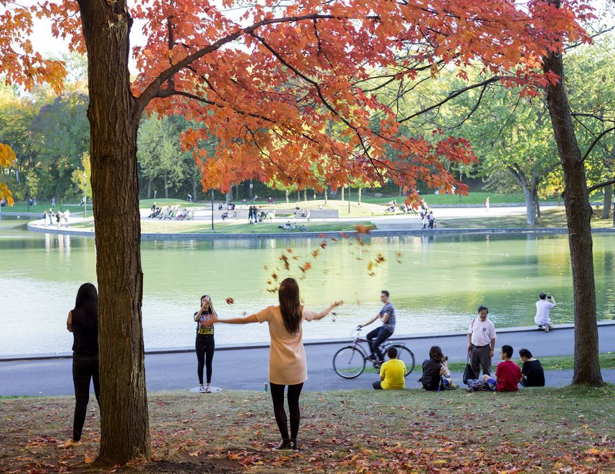 "Changing leaves mean photo opportunities for visitors to Beaver Lake in Mount Royal Park. ""Autumn is ..."