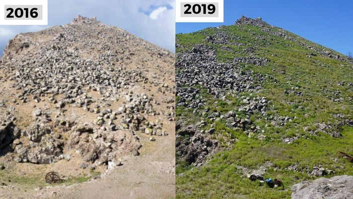 An evolution in colour: Redonda in 2016 and 2019.